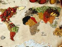 Exploring Language Through Culture