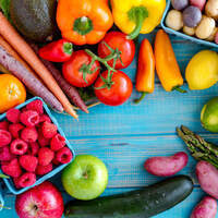 Health Bites: Plant-Based Nutrition and Changing Medical Paradigms
