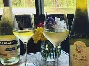 Trick or Wine
