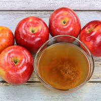 Cider and Perry Production - A Foundation