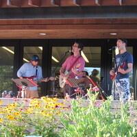 Rock Concert for Kids: The Pinkletinks