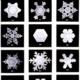 Snowflake Extravaganza