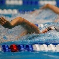 Kenyon College Men's Swimming and Diving vs  University of Cincinnati - Senior Day