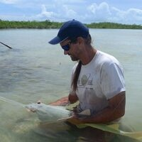 Smalltooth Sawfish: Is there hope for one of our largest and most endangered marine predators?