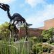 Enhanced Learning Homeschool Program: Fossils