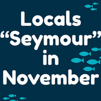 "Locals ""Seymour"" in November"
