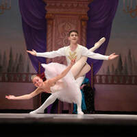 Nutcracker in a Nutshell by The Ballet Arts Ensemble of Fairfax