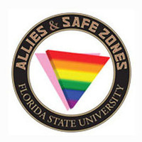 Allies & SafeZones 205:  Coming Out, Family Dynamics, & Other Support Systems (PDSZ205-0004)
