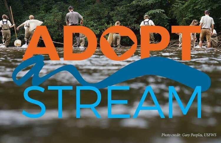South Carolina Adopt-a-Stream Chemical & Bacterial Workshop