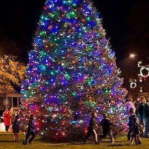 Hamilton for the Holidays: Night of Lights