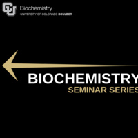 Biochemistry Seminar: Dorota Gryko