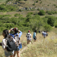 Information Session: Summer 2019 Field School Abroad