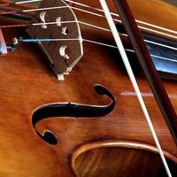 Jennifer Dalmas; violin and Evgeni Raychev; cello
