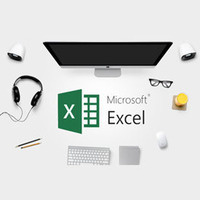 Microsoft Excel II (PDXLS2-0033)