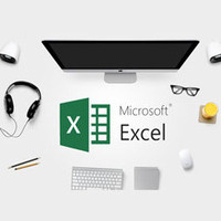 Microsoft Excel II (PDXLS2-0036)