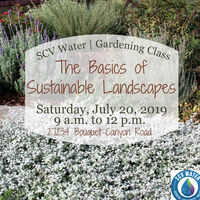 SCV Water Gardening Class: The Basics of Sustainable Landscaping