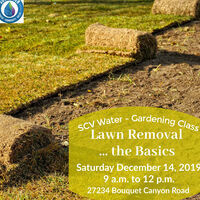 SCV Water Gardening Class: Lawn Removal … the Basics