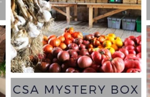 Cooking Class: CSA Mystery Basket