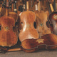 Opening Reception: Violins of Hope
