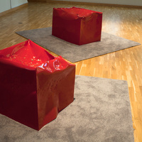 Artist Lecture: Kate Gilmore