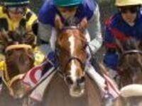 SHSU Day At The Races