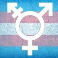 A Dinner to Discuss the Importance of Trans Narratives