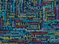 Careers in Modern Languages