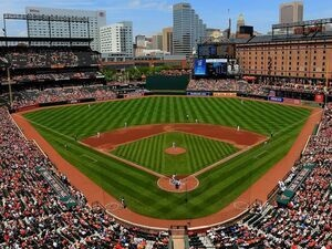 Baltimore Orioles Baseball