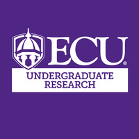 Undergraduate Research Information Session