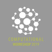 Computational Workshop 2019