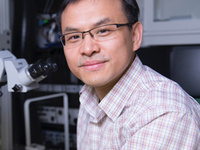 BME 7900 Seminar Series - Qi Wang, PhD