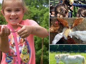 Farm Adventure Day
