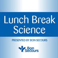 Lunch Break Science - Visualization in Geology