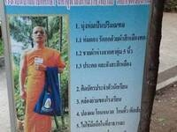 The Robes Make the Monk? On the Disciplining of Monks in Contemporary Thailand