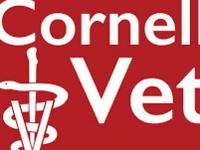 College of Veterinary Medicine Open House