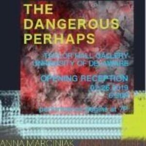 The MFA Welcome Exhibition: The Dangerous Perhaps