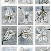 A Lily Blooms in Winter: Exhibit by Alston Conley