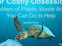 Our Costly Obsession: The Problem of Plastic Waste and What You Can Do to Help