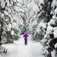 Cross Country Ski Trip