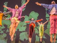 Performance: David Dorfman Dance