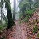 Lower Hardesty Trail Hike