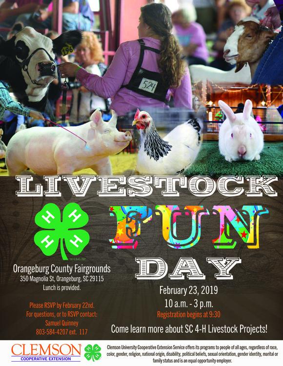 Livestock Fun Day