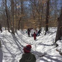 VCS Winter Walk: Featherstone