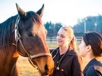 Cornell Equine Seminar Series: It´s that time of the year again: 3-way, 4-way, which way to go with vaccines for my horse?