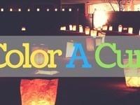 Color A Cure 2019