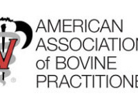 AABP Rounds - Externship Rotations