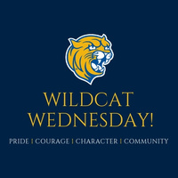 Wildcat Wednesday!