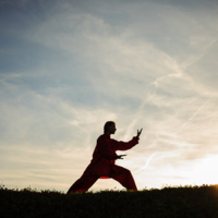 Well-U:  Tai Chi Introduction Class