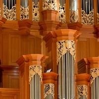 Richard D. Moe Organ Recital Series: William Porter, Organist