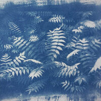 TAM Workshop: Exposure to Cyanotype